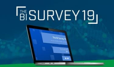 BARC BI Survey 19 Qlik Report