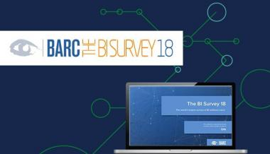 BARC BI Survey 2018 Qlik Rated By BI Users In 6 Top Categories & a BI Leader in 30